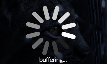slow unreliable wifi causes buffering